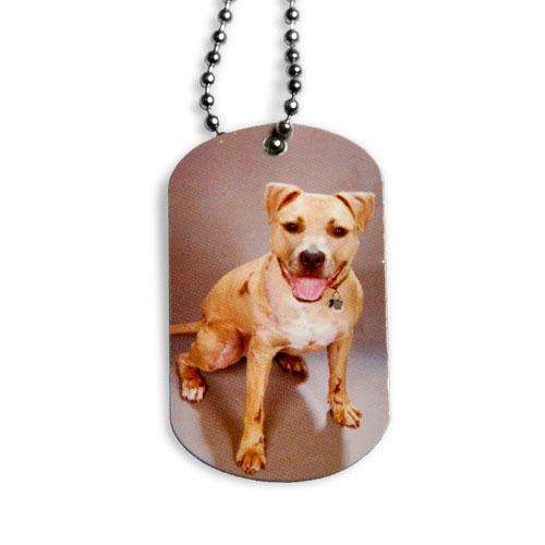 Dog Tag 11